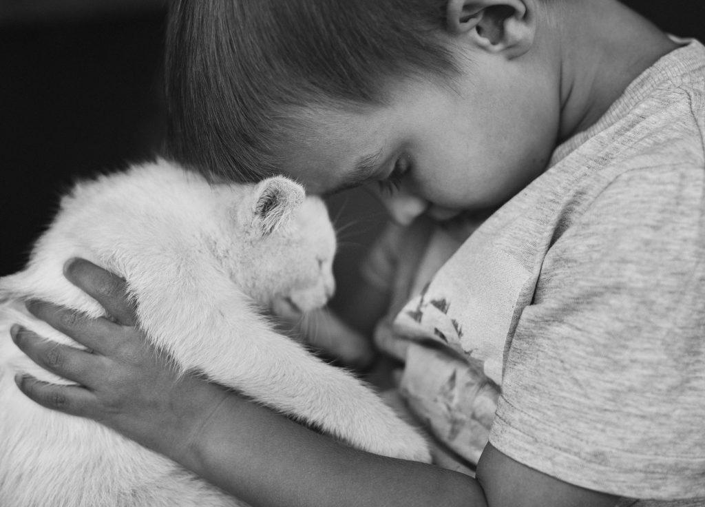 sesja zdjęciowa dziecko z kotem