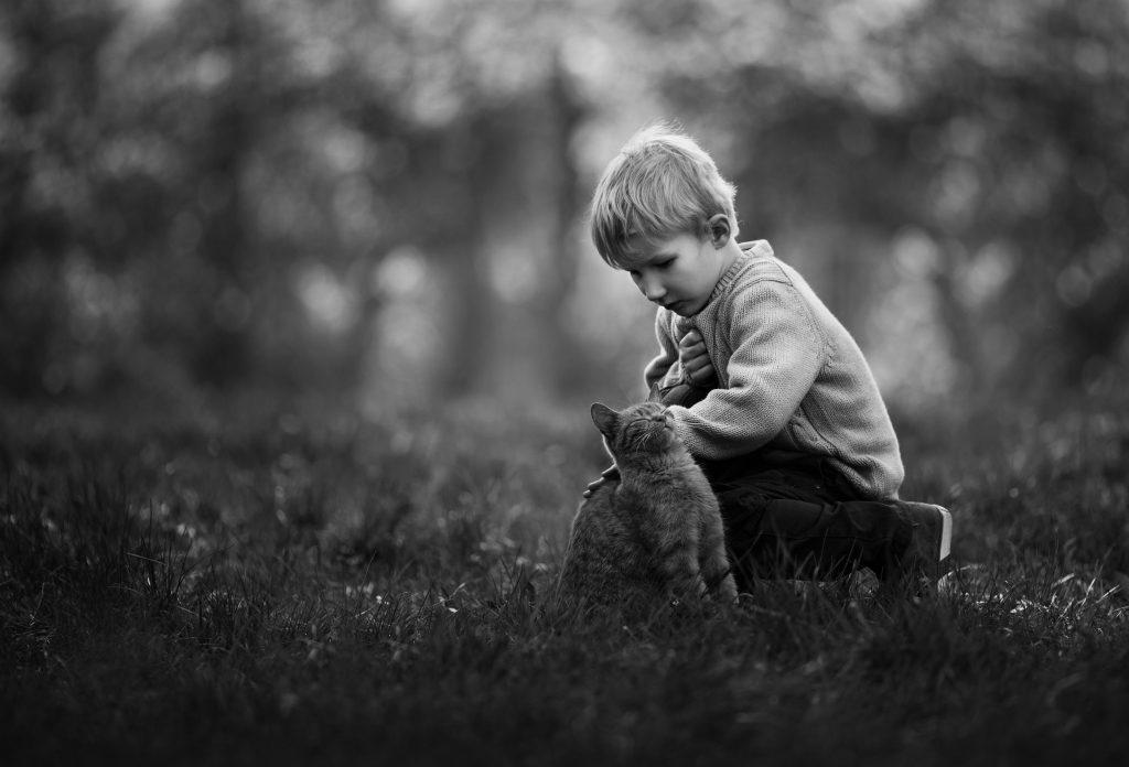 sesja fotograficzna dzieci katowice